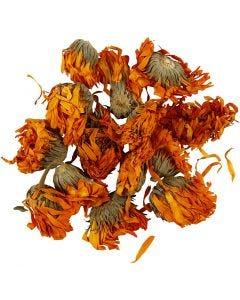 Kuivatut kukat, Kehäkukka, halk. 1 - 1,5 cm, kultainen, 1 pkk