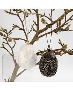 Höyhenpäällysteiset munat