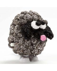 Liikkuva musta lammas