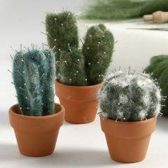 Neulahuovutetut kaktukset