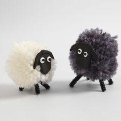 Pompom lammas