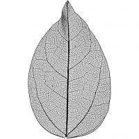 Kuivatut lehdet, Pit. 6-8 cm, musta, 20 kpl/ 1 pkk