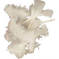 Höyhenet, koko 7-8 cm, valkoinen, 500 g/ 1 pkk