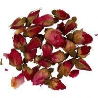 Kuivatut kukat, Ruusun nuput, Pit. 1 - 2 cm, halk. 0,6 - 1 cm, tummanpinkki, 1 pkk