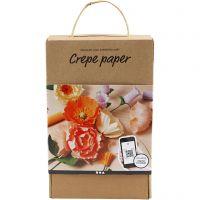 Kreppipaperi -aloituspakkaus, 105 g, värilajitelma, 1 set