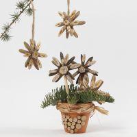 Joulutähti puukiekoista